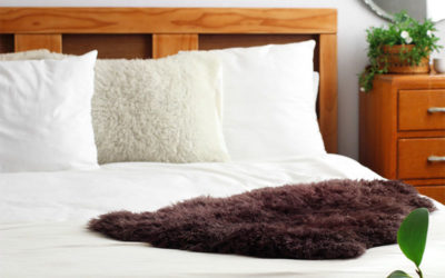 DIY Dyed Sheepskin