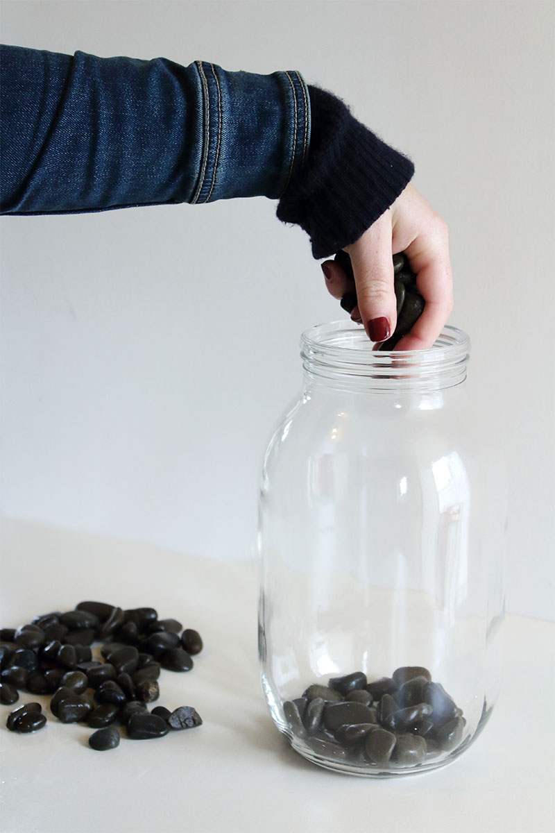 How to make your own Indoor Water Plant | Eclectic Creative